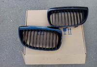 BMW E87 Решетки радиатора (ноздри) 2004-2007